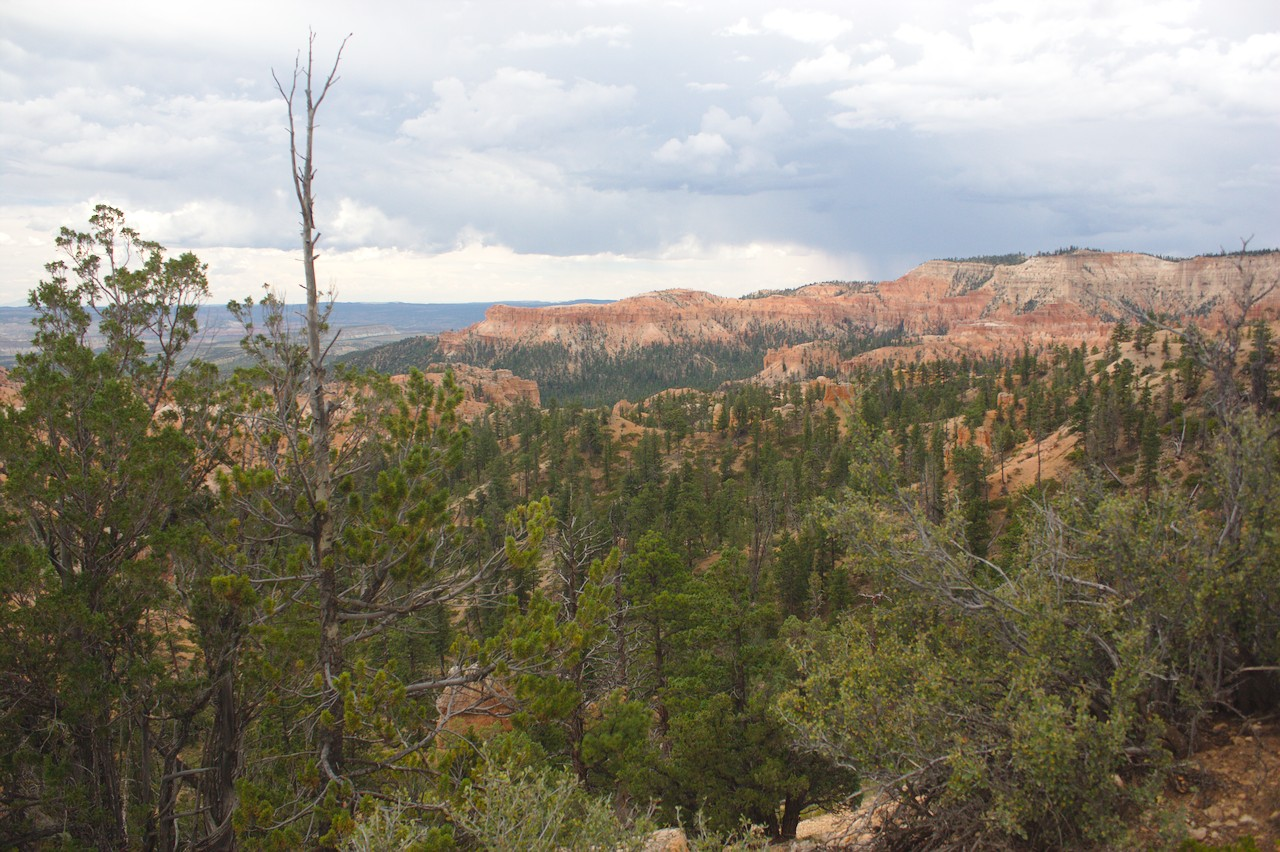 overview of Bryce Canyon from the Rim Trail
